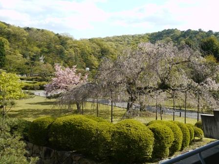 京都③.JPG